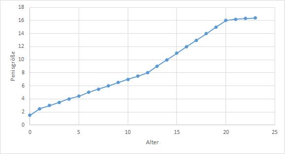 Wachstumskurve des menschlichen Penis