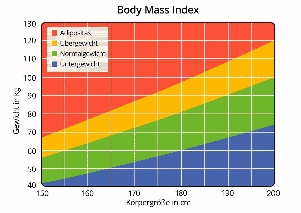 BMI – Body Mass Index