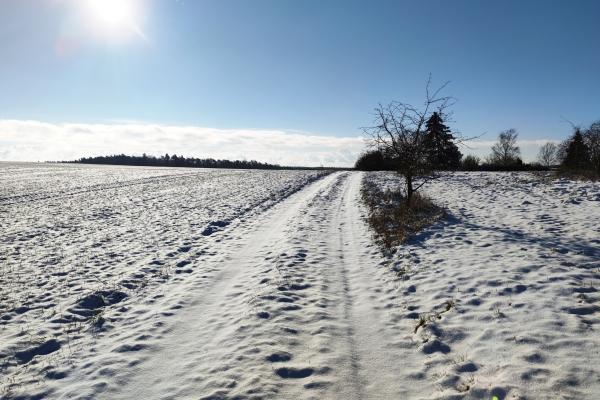 Schnee, über dts Nachrichtenagentur