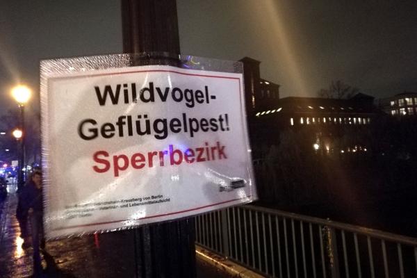 Warnschild vor Geflügelpest in Berlin, über dts Nachrichtenagentur