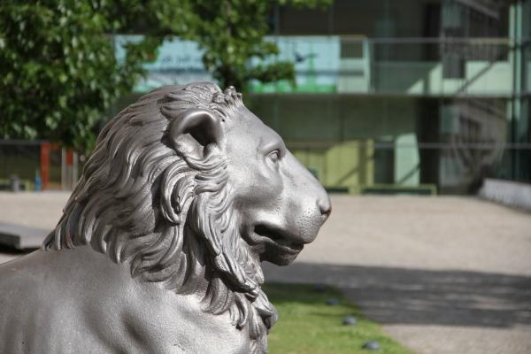Universität Halle, über dts Nachrichtenagentur