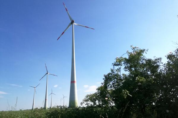Windräder bei Tantow in Brandenburg, über dts Nachrichtenagentur